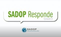 SADOP RESPONDE -VIII-
